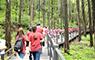 2017 건강한 소통 K2 스쿨핑 2탄 : 안산도시자연공원 편 - 국민대학교 그리너리(Greenery), 산림환경시스템학과